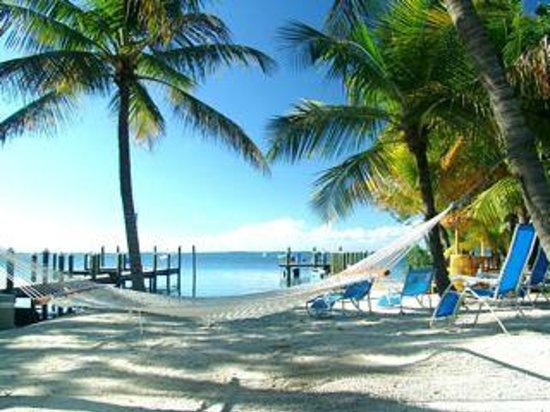 Photo of The Pelican Key Largo