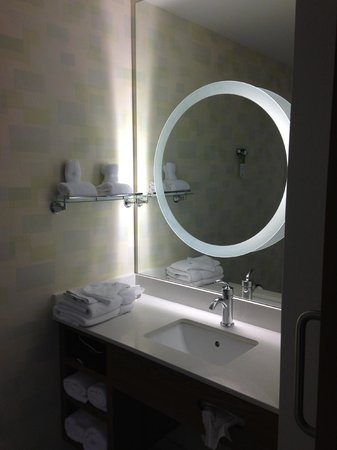 Springhill Suites Cincinnati Airport South: Vanity