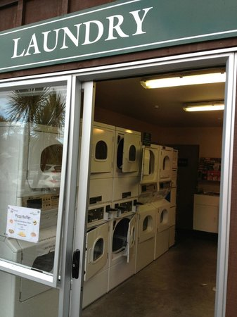 Rainforest Retreat: Backpackers Laundry