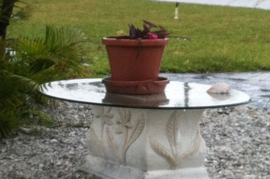 Beau Lido Suites: why a glass table with a dead plant was in the yard, I can only imagine