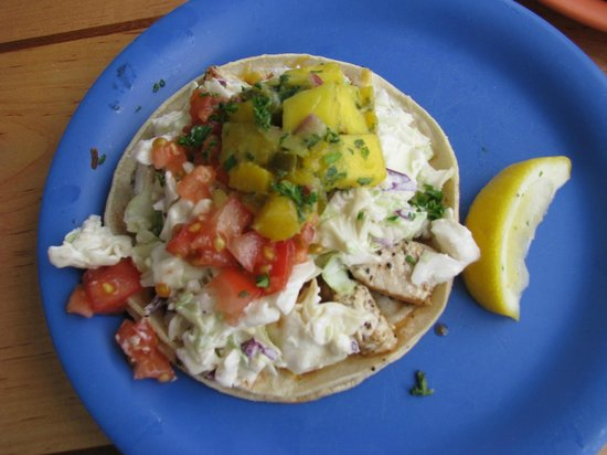 17 ingredient fish taco picture of coconut 39 s fish for Coconut s fish cafe