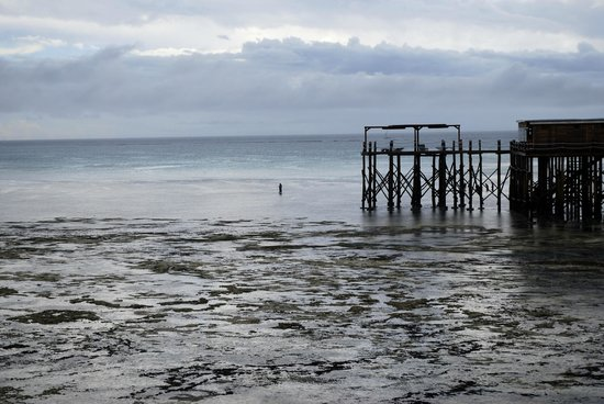 Essque Zalu Zanzibar: low tide and jetty