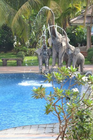 Ree Hotel: elephants at the pool side...hehehehe