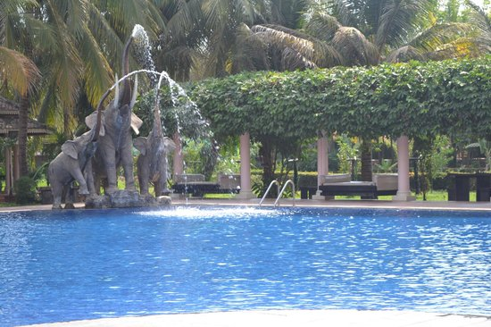 Ree Hotel: swing at the pool side