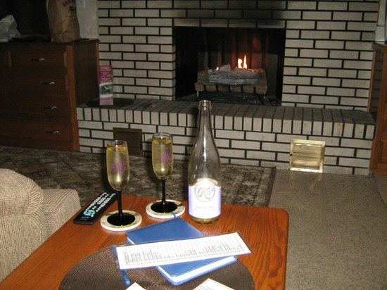 Donna's Premier Lodging: Wine in the provided glasses, in front of the fire