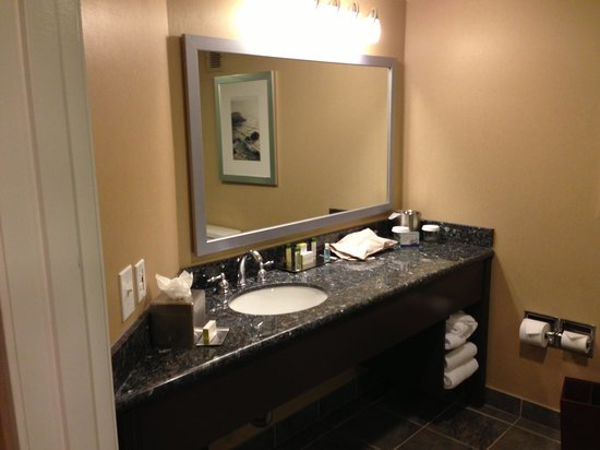 Doubletree Hotel San Diego Downtown: The Sink