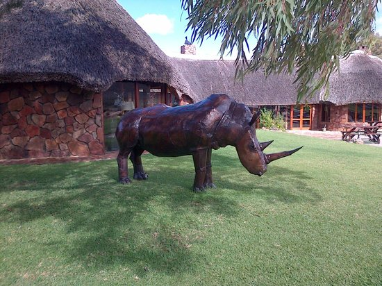 Touwsriver, Sr-Afrika: Metal sculpture of a rhino outside the bar and lounge.
