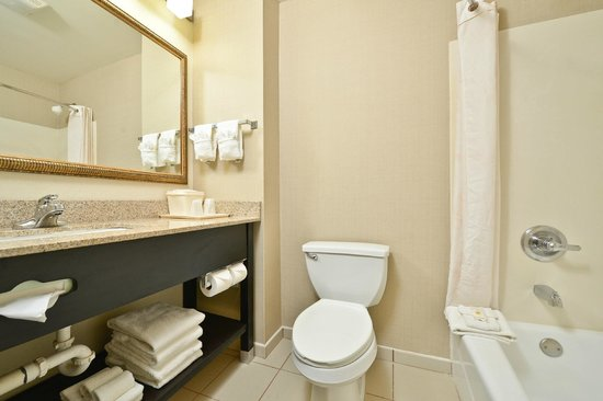 Comfort Inn & Suites at Stone Mountain: Guestroom Bathroom