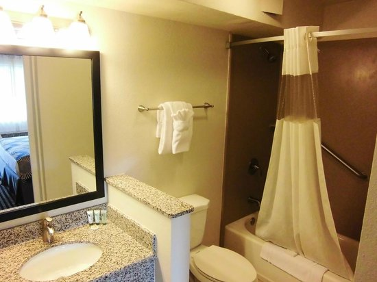 BEST WESTERN Palm Court Inn: Bathroom in standard room