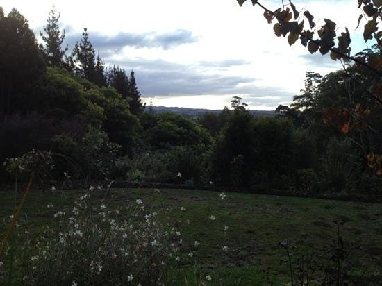 Treghan Cottage: the view from our room - so peaceful yet so close to all the amenities of Kerikeri