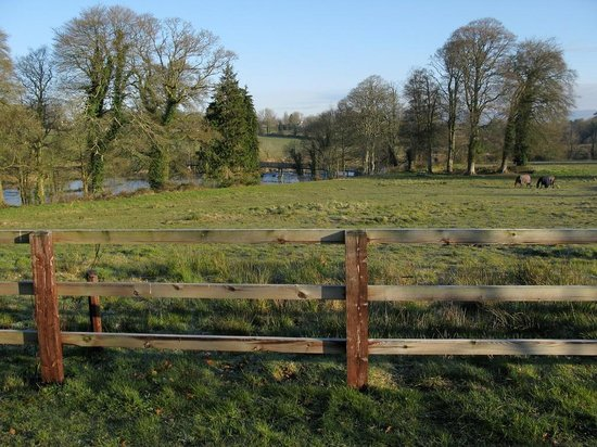Castle Oaks House Hotel: A paddock beside the hotel and river Shannon
