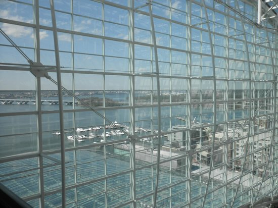 Gaylord National Resort & Convention Center: National Harbor view from Atrium