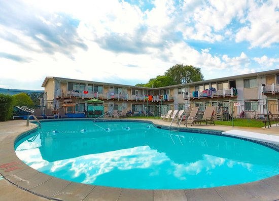 Bowmont Motel: Best pool area for family fun