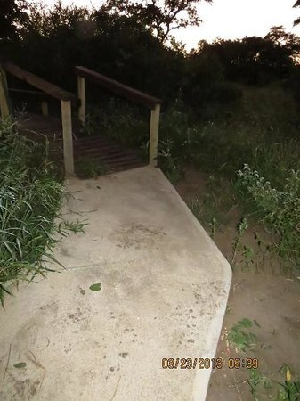 Simbavati River Lodge: Elephant foot prints on our side walk