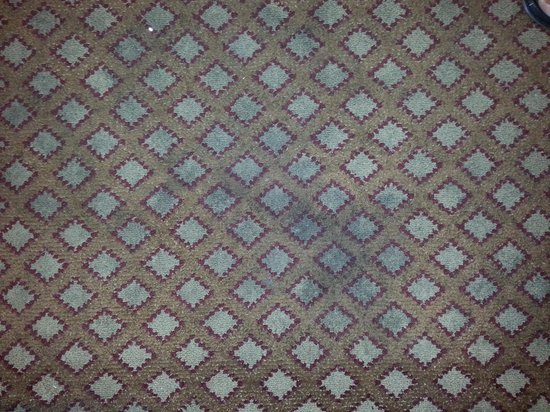 Hilton Garden Inn Orlando at SeaWorld: dirty carpeting