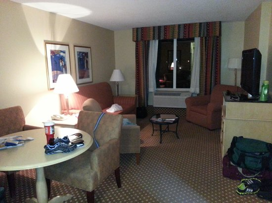 Hilton Garden Inn Orlando at SeaWorld: living room
