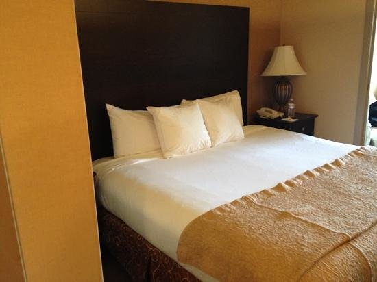 Oxford Suites Portland - Jantzen Beach: king bed