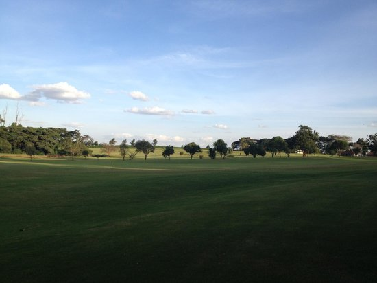 Windsor Golf Hotel and Country Club: Greens