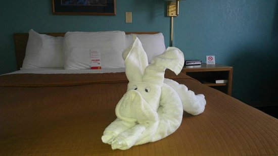 Super 8 Baxter/Brainerd: Towel Animals