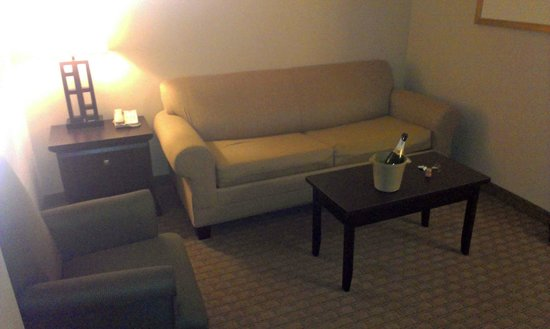 Holiday Inn Express Hotel &amp; Suites Ottawa Airport: Main Area