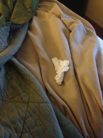 Comfort Inn &amp; Suites Downtown: wadded up tissues i found in the bed (not mine)
