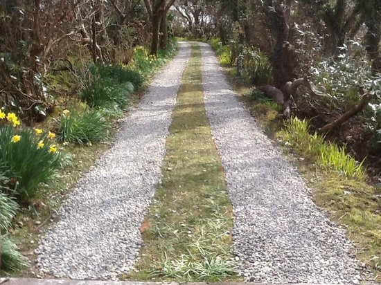 Achill Island, Ireland: Driveway into the Secret Garden