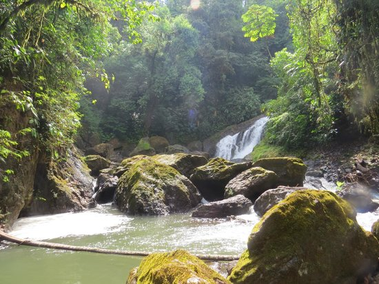 Casita Corcovado: Hike to waterfall
