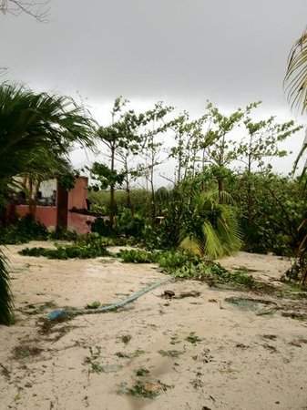 Hotel Maya Luna: Road behind hotel after hurricane.