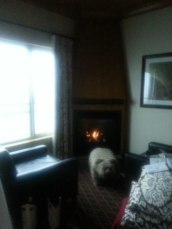 The Edgewater Hotel Seattle: Cozy