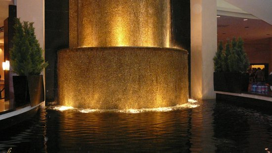 Hyatt Regency Dallas: Fountain in lobby