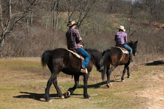 Cullowhee, Karolina Pnocna: Riding our horses!