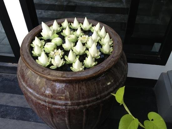 Shinta Mani Siem Reap: It's the little touches that make this Hotel a stand out...