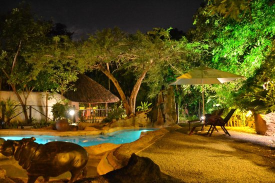 Wildebees Ecolodge: Giardino interno con piscina