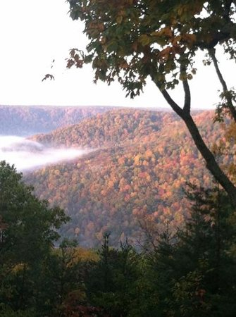 Monteagle, TN: Lil Bear Cabin - cozy cabin with breathtaking view. VRBO. com/257314