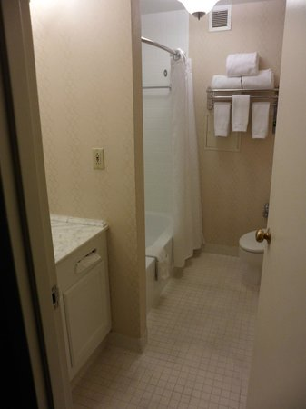 Renaissance Cleveland Hotel: The bathroom.