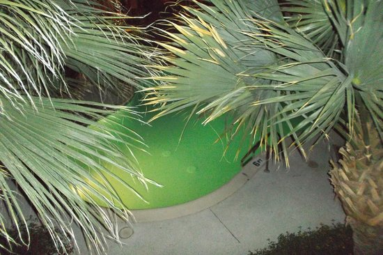 BEST WESTERN Plus Papago Inn &amp; Resort: Pool at night from balcony