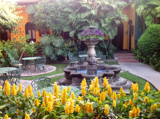 Hotel Casa Antigua: Bleautiful flowers