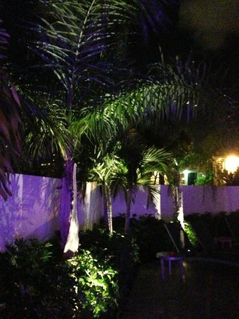 The Royal Palms Resort &amp; Spa: Back Pool area at night