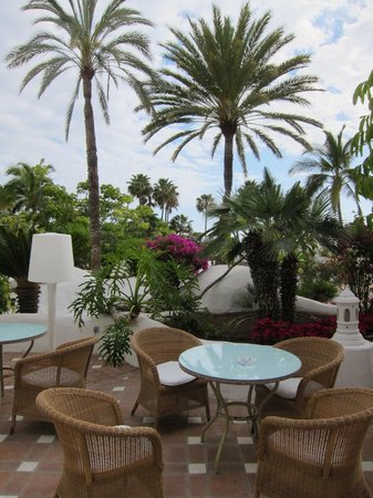 Hotel Jardin Tropical: Garten