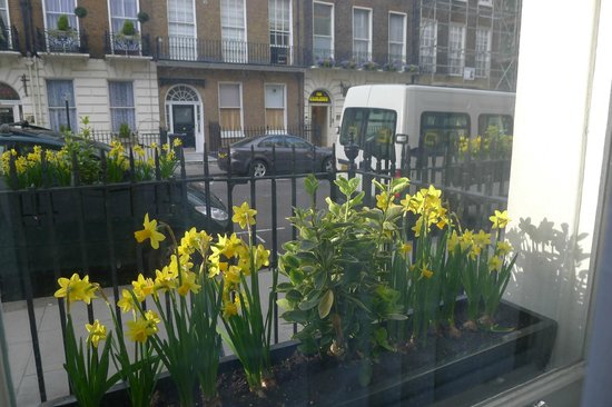 The Sumner Hotel: view from room to street with nice tulips on the window sill