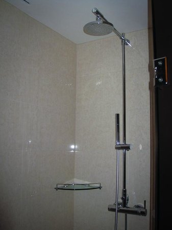 Sheraton Incheon Hotel: Shower area of room