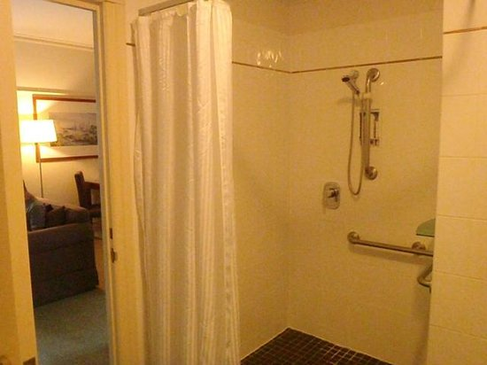 Rendezvous Hotel Brisbane Anzac Square: Metal rails in shower