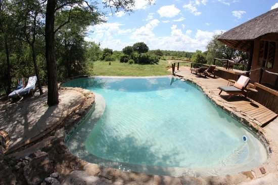 Garonga Safari Camp: Pool