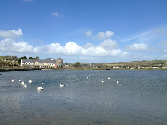 Rosscarbery, Ireland: View to the hotel from one of the surrounding walking trails