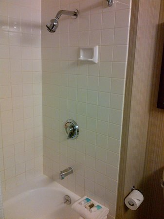 Hyatt at Fisherman's Wharf: Shower and bathtub