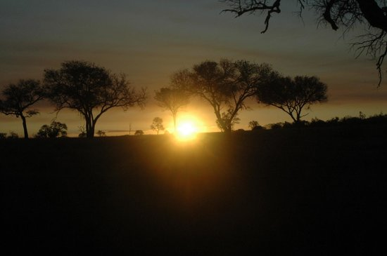 Notten's Bush Camp: Ocaso