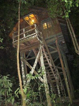 Permai Rainforest Resort: View from below