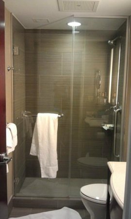 Sheraton Brooklyn New York Hotel: shower