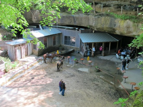 Tuscumbia, AL: Rattlesnake Saloon from above