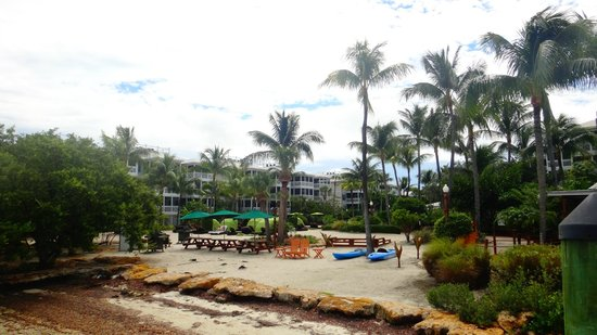 Hyatt Beach House Resort: Beach is nothing but the pool is great